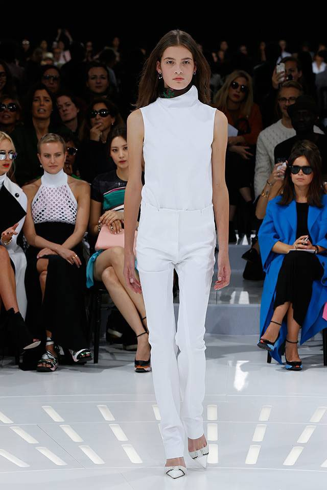 Christian Dior Spring-Summer 2015 collection
