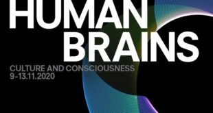 Humans Brains - Prada